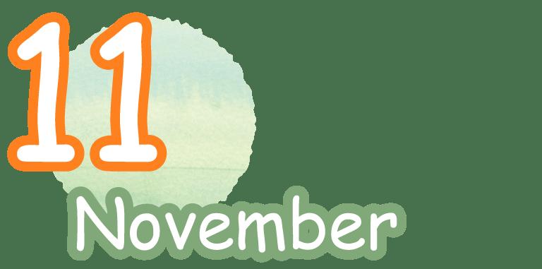 11 Novenmber